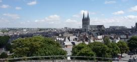 Pourquoi faire une licence à Angers?